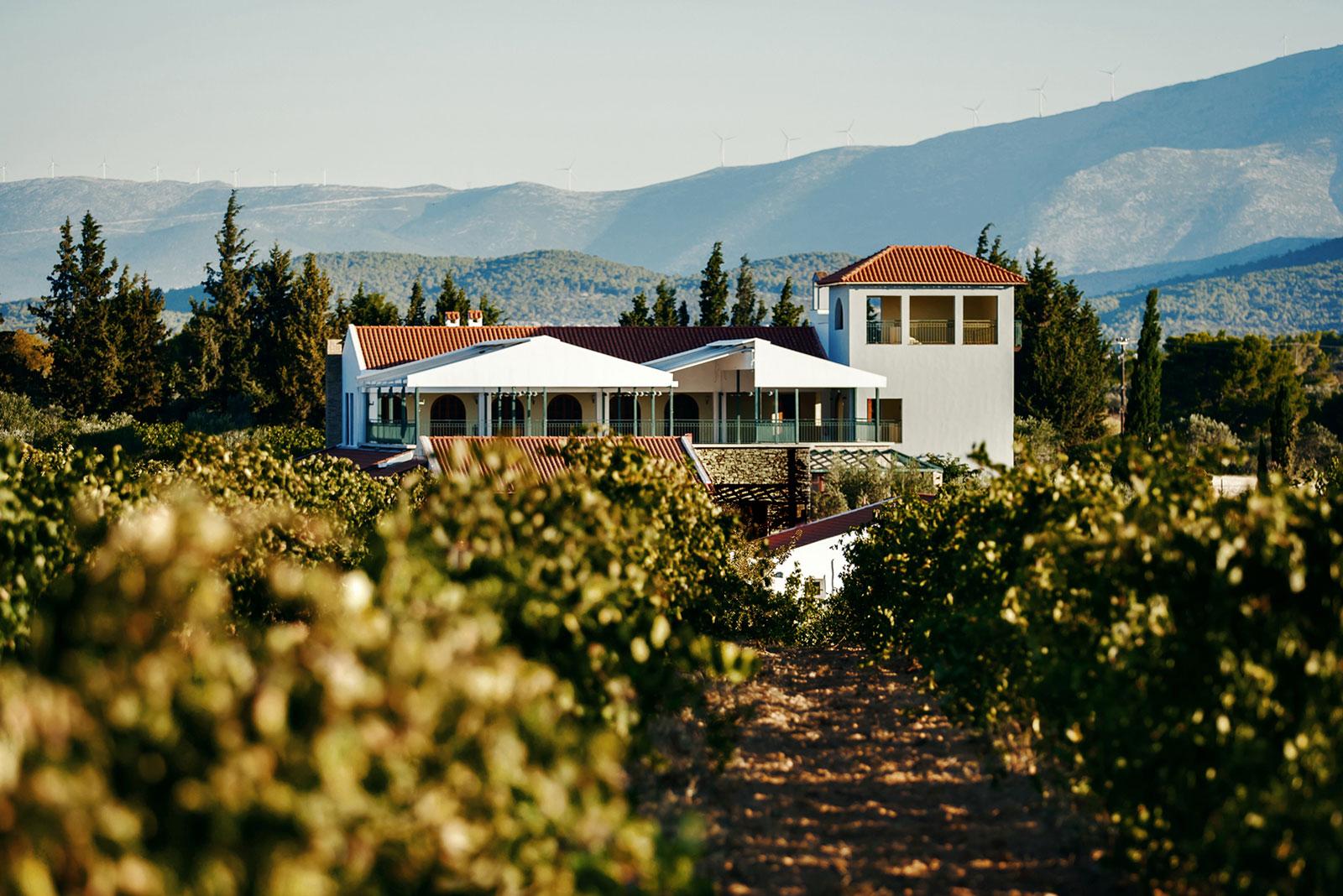 Tour & Wine Tasting at Kaniaris Tower, Megara